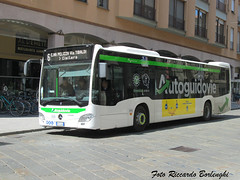 AGI Pavia - Mercedes Benz Citaro C2 (Riccardo Borlenghi) Tags: evobus mercedes benz citaro c2 pavia public transport autoguidovie italiane lombardia trasporto pubblico zf ecolife