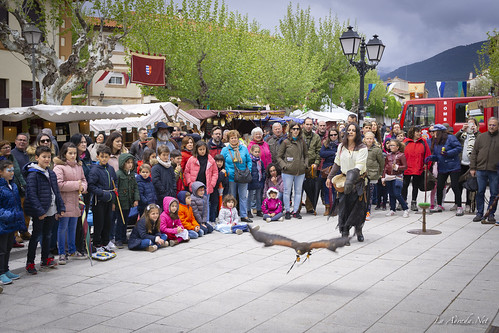 "XVII Mercado Medieval de La Adrada • <a style=""font-size:0.8em;"" href=""http://www.flickr.com/photos/133275046@N07/41820792432/"" target=""_blank"">View on Flickr</a>"