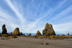 Radiant morning (D. Inscho) Tags: olympiccoast pointofthearches washingtoncoast washington pacificnorthwest beach seastack