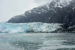 MS Westerdam - 7 Day Alaska May 2018 - Glacier Bay-238.jpg (Cindy Andrie) Tags: alaska hollandamerica d800 nature britishcolumbia beach victoriabc westerdam glacierbay landscape nikon cindyandrie canada andrie glaciers nikond800 cindy
