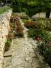 Balchik botanical garden, Bulgaria (cod_gabriel) Tags: bulgaria balchik balcic botanicalgarden balchikbotanicalgarden cadrilater dobrogea dobruja dobrudja roses trandafiri