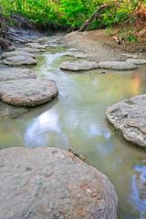 _DSF2090-Edit-Edit.jpg (Stephen C3) Tags: arborhillsnaturepreserve river
