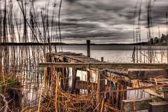 The old jetty (Jens Haggren) Tags: seaside sea water moody landscape jetty bridge reed sky broken pier nature trees silhouettes nacka sweden jenshaggren le longexposure