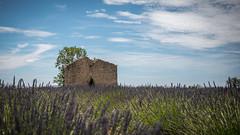 Provence (pascal548) Tags: