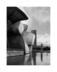 A masterpiece of the 20th c. 37 (2 Marvelous 4 Words (Blanca Gomez)) Tags: bilbao spain museum guggenheimmuseum museo arquitectura architecture building masterpiece artgallery arts workofart frankgehry thomaskrens bw blackwhite deconstructivism glass limestone titanium