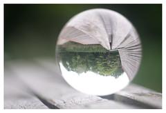 Park bench (leo.roos) Tags: bench bank lensball crystalball roussel12735 a7 rousselparisanastigmatprojectiontraiteseriepf127mmf35 projectorlens projectionlens day127 dayprime dayprime2018 dyxum challenge prime primes lens lenzen brandpuntsafstand focallength fl darosa leoroos xif