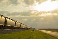 Spring Sunset (matthewspika) Tags: ns illinois grain freight train sun sunset afternoon
