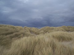 Troubled Sky, Sand Dunes, Uig, Isle of Lewis, April 2018 (allanmaciver) Tags: sand dunes rushes weather clouds dark troubled wind cool conditions beach uig isle lewis scotland allanmaciver ardroil
