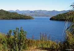 Beautiful Lake Pedder with Frankland Ranges in the background - Tasmania (derekngill) Tags: australia tasmania landscapes lakes countryside mountains