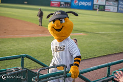 BeesvsRevs-5 (doublegsportsimages) Tags: newbritainbees york revolution baseball