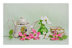 Tea Time and Dogwood Blooms (Bob C Images) Tags: dogwood blooms flowers tea teaset cup pitcher stilllife pinkdogwood whitedogwood textures