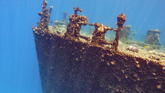 the Titanic? (werner boehm *) Tags: wernerboehm wreck wrack redsea egypt sinai diving