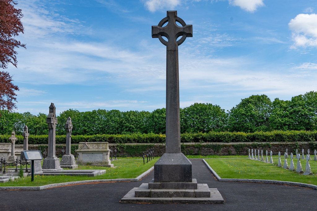 ST. PATRICK'S COLLEGE CEMETERY IN MAYNOOTH [SONY A7RIII IN CROP SENSOR MODE]-139537
