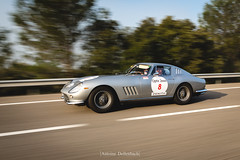 Ferrari 275 GTB (antoinedellenbach.com) Tags: worldcars car race racing circuit france motorsport eos automotive automobiles automobile racecar sport course lightroom coche photography photographie vintage historic tourauto peterauto optic2000 auto canon legend tourauto2018 ferrari 275 gtb 275gtb panning highway 5d 5d3 5dmarkiii