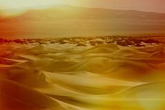 My Name is On the Line (Thomas Hawk) Tags: california dv2011 deathvalley deathvalleynationalpark google googledeathvalleyphotowalk2011 mesquitedunes mesquiteflatdunes usa unitedstates unitedstatesofamerica desert sanddunes sunrise fav10 fav25