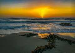Asilomar Beach Sunset on iPhone X (Thanks for 1.5 million views) Tags: asilomar beach sonykandotrip