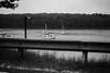 Boat Rail (David Stebbing) Tags: 16x9 blackandwhite boats flickr