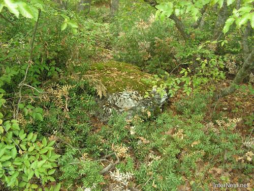 Крим, Таврські могильники на горі Кішка InterNetri Ukraine 2009 125