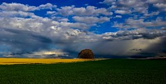 The weather shows its best side (sylviafurrer) Tags: wetter weather wolken clouds himmel sky landschaft landscape frühling springtime gewitterstimmung storm baum tree felder fields coth5