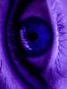 uveye (fe2cruz) Tags: 14mp 650nm bandpassfilter dc fh20 ir lumix macrocloseup uv ultraviolet vario blue eye eyelashes infrared infraredconversion kolarivision macro pupil purple