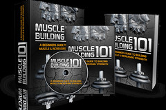 Muscle Building 101 PLR Pack Review – Billion Dollar Evergreen Market (Sensei Review) Tags: internet marketing muscle building 101 plr pack bonus download oto reviews rick warid testimonial