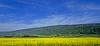 Au pied du Jura (Diegojack) Tags: ballens vaud suisse paysages printemps dschx90v panorama jura jaune colza groupenuagesetciel