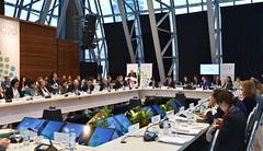 1era reunión del grupo de trabajo de Comercio e Inversiones (G20 Argentina) Tags: 1st meeting trade investment working group 1era reunión del grupo de trabajo comercio e inversiones buenos aires faurie cabrera reyser
