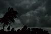 (Benaami) Tags: nikon nikond610 d610 nikkor natural naturallight nikkor35mmf2 nikkor35mmf2afd nikon35mmf2afd nikon35mmf2 sky tree storm dark darksky cloud darkclouds windy bengal westbengal