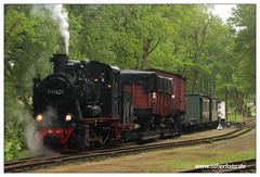 Pollo - 2018-03 (olherfoto) Tags: bahn eisenbahn schmalspurbahn museumsbahn pollo dampf dampflok dampfzug vasut kisvasut rail railway railroad narrowgauge steam train steamtrain