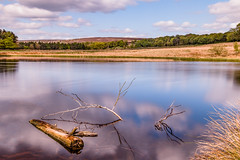Drifting (patrica.evans3) Tags: longshaw estate water long exposure sky trees peak district national trust clouds blue green
