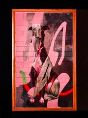 Greyhound Tracing (Steve Taylor (Photography)) Tags: collar greyhound telmomiel dog art abstract graffiti painting picture streetart black green brown pink red brick newzealand nz southisland canterbury christchurch city shape ymca spectrum