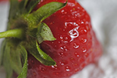 Erdbeeren (petra.wruck) Tags: erdbeere erdbeeren strawberries strawberry beere beeren berry berrys pflanzen pflanze plants obst fruit lebensmittel foodstuffs food foods groceries provisions viands himbeeren raspberries vitamine vitamins