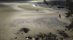 Reflections (Free Range Photos) Tags: beach light reflections reflecting hss slidersunday