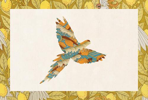 Carte postale // 10x15cm // Perroquet