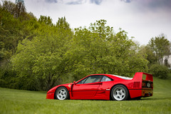 Lady F40. (David Clemente Photography) Tags: ferrari ferrarif40 f40 cars supercars hypercars nikonphotography photography carsandcoffee brescia v8 automotivephotography carspotting trees
