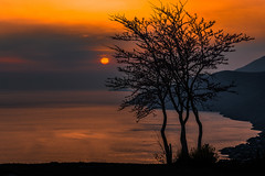 Sunset (Vagelis Pikoulas) Tags: sun sunset porto germeno greece aigosthena attiki attica europe greek vilia travel tree landscape sea seascape spring march tamron 2018 vc 70200mm canon 6d sky colour colors nature