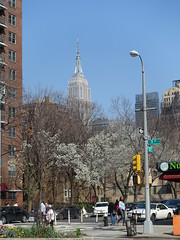 201804107 New York City Chelsea and 'Empire State Building' (taigatrommelchen) Tags: 20180415 usa ny newyork newyorkcity nyc manhattan chelsea icon city building blossoms