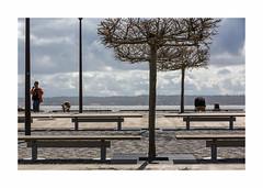 Le Cap Ferret-9642125A9642 (helenea-78) Tags: arcachon mer océan bassindarcachon capferret streetphotography street streetart