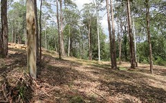 650 Yarramalong Road, Wyong Creek NSW