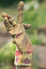 well used (annapolis_rose) Tags: gardeninggloves neighbourhoodgarden arbutusgreenway vancouver