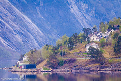 On the Fjord Norway (jacbfotografie.co.uk) Tags: norway travel mountains nature fjord forest scandinavia snow houses living water reflection green spring summer cruise fredolsten boat scenery