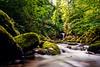 Geroldsauer Wasserfälle (juerger69) Tags: badenbaden geroldsau wasserfall grubbach schwarzwald bach wasser moos wald