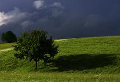 shadow (robertoburchi1) Tags: landscape shadow ombra paesaggio sky trees colours