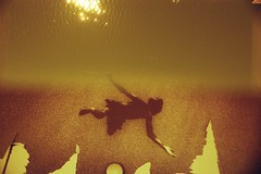 (von8itchfisk) Tags: lomography 35mm redscale doubleexposure olympus om1 film filmisnotdead analog analogphotography analogue noedit incamera vonbitchfisk ipswich suffolk eastanglia water