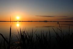 Sonnenuntergang Ostsee (Rod Elbahn) Tags: sonnenuntergang sunset meer ostsee sun schilf abendstimmung abend rügen natur nature boot sonne himmel sky wolken clouds