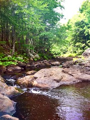 Mysterious River (zak.dio) Tags: slippery rocks stream brook water trees flowing forest river waterfall