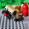 Day #3745 (cazphoto.co.uk) Tags: lego dog firehydrant pavement polybag pug model 020418 panasonic lumix dmcgx8 panasonic1235mmf28lumixgxvarioasphpowerois project365 beyond3653