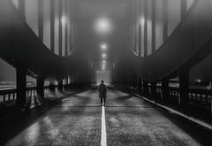 Elbbrücken (fotoerdmann) Tags: blackandwhite fog nebel germany strase brücke elbe hamburg fotoerdmann