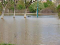 DSC06708 (Fotografías Gaby) Tags: rioebro ebro zaragoza crecida extraordinaria riada rio españa aragón