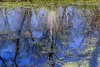 Dream World of Reflections (Rh+) Tags: iowa pond reflections blue nature dreamscape spring